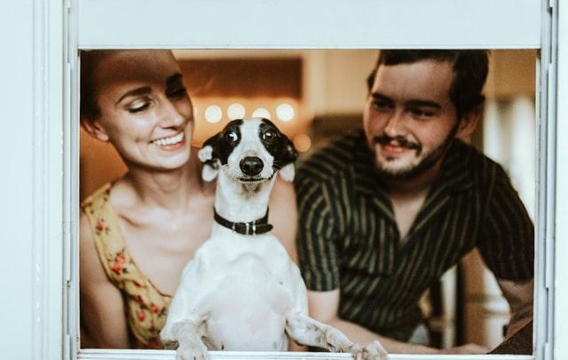 犬とカップル