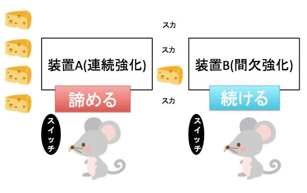 アメリカの心理学者スキナーのマウス実験
